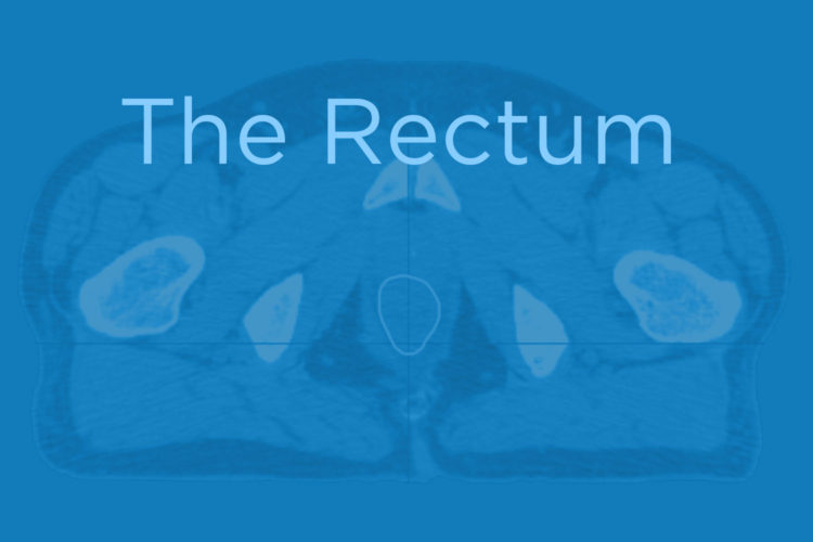 Announcing New CAP Structure: The Rectum on CT (Premium)