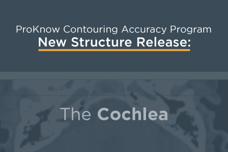Announcing New Structure Releases: The Cochlea and Pharyngeal Constrictors