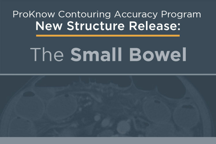Announcing New Structure Release: The Small Bowel