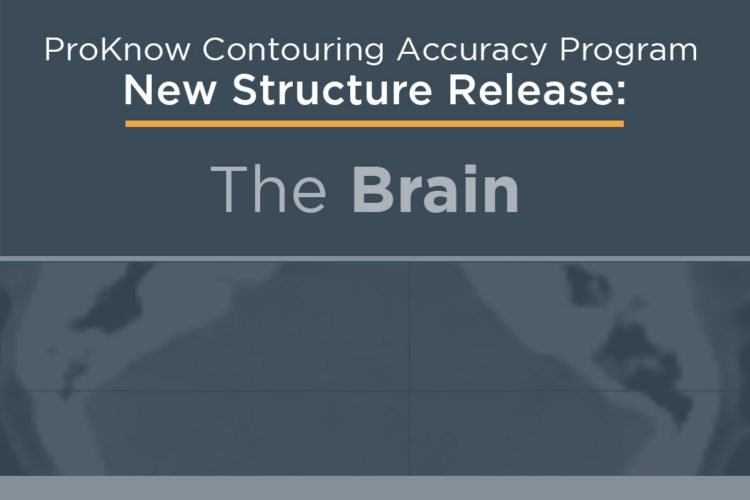Announcing New Structure Release: The Brain