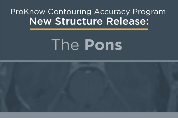 Announcing New Structure Release: The Pons