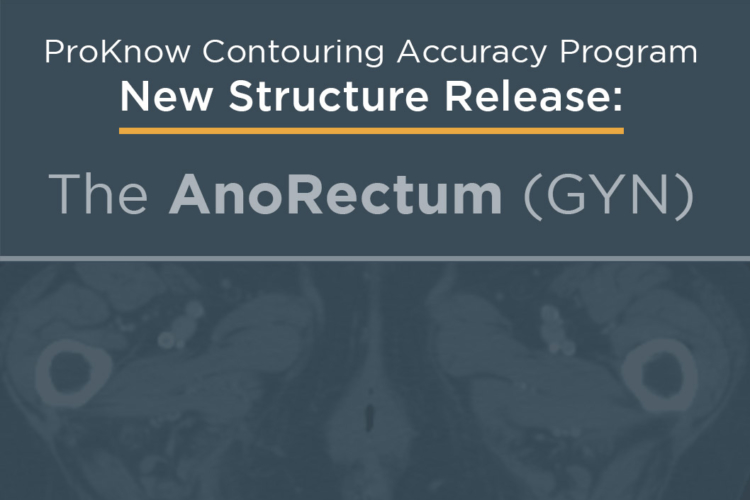Announcing New Structure Release: The AnoRectum (GYN)