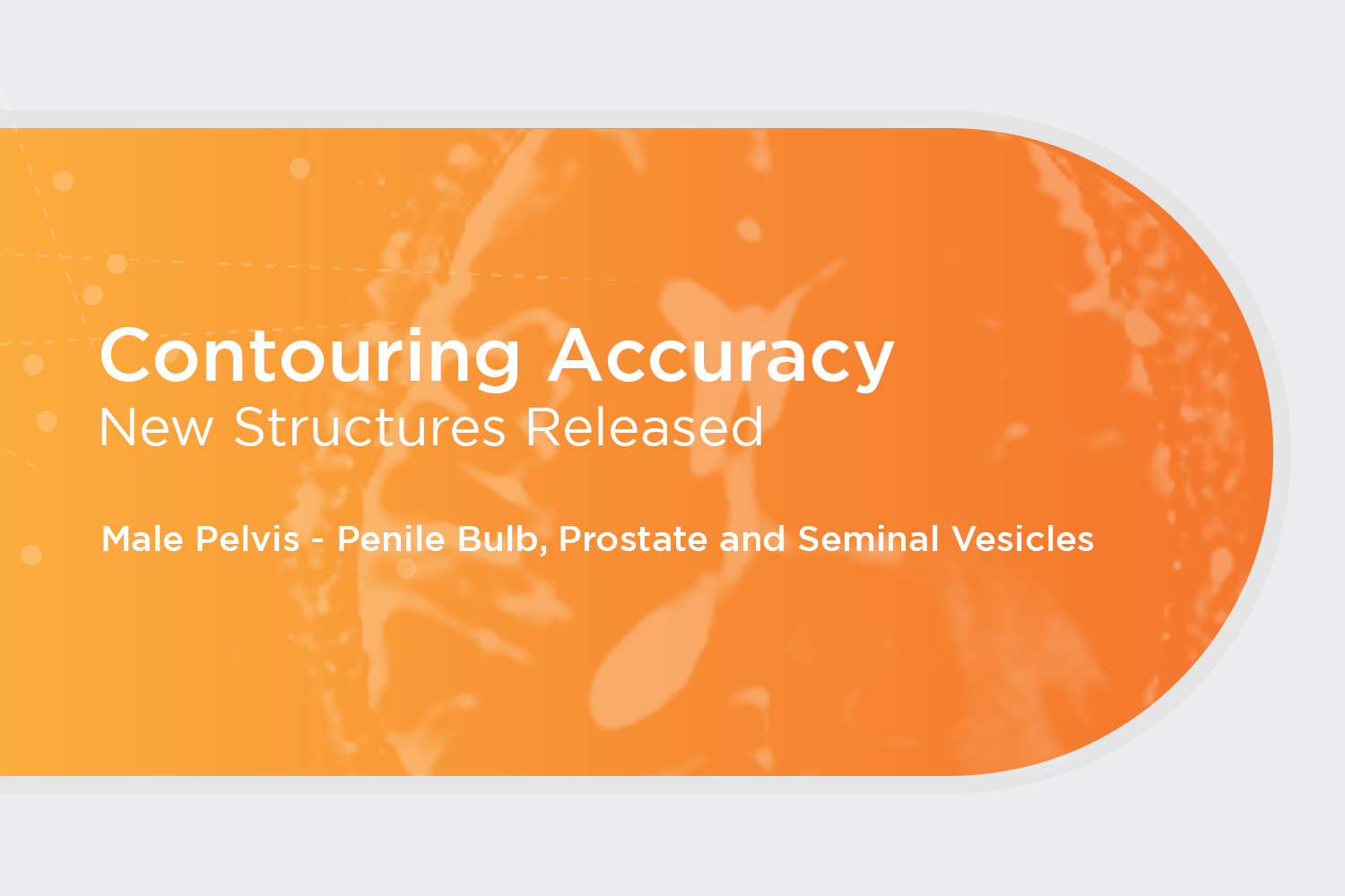 Announcing New Structure Release: Male Pelvis – Penile Bulb, Prostate and Seminal Vesicles